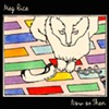 Album Review: Meg Rice, 'Now or Then'