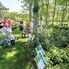 Plein Air Artists Paint the Scenery at Horsford Gardens & Nursery