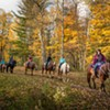 Lajoie Stables Guides Horseback Riders Through the Green Mountains