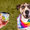 Ben & Jerry's Launches Frozen Desserts for Dogs