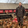 Pastured Eggs, Composting and Human Rights Are Linked at Black Dirt Farm