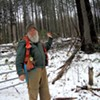 Legislators Seek to Secure the Future of Vermont's Valuable Forests