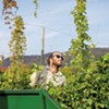 Champlain Valley Hops Teams Up With Local Brewers for the Vermont Hop Project