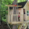 A Backyard Tree House With Zip Line and Hammock