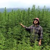 Vermont Hemp Farmers Find Fertile Ground in CBD Crop