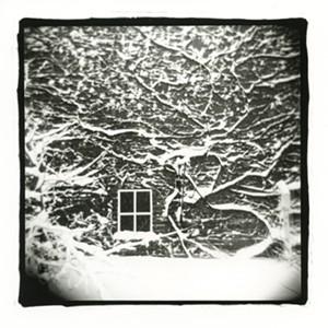 "COURTESY OF JORDAN DOUGLAS - ""Snowy Vines, Fort Ethan Allen"" by Jordan Douglas"