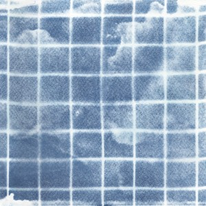 COURTESY OF START SPACE - Untitled cyanotype print by John Richey