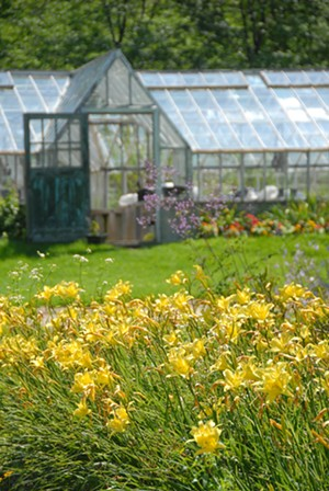 Horsford's Greenhouses and Gardens - Uploaded by horsfordnursery