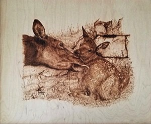Pyrographic engraving by Barb Godwin - Uploaded by Valleyartsvt