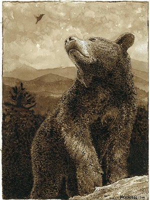 "COURTESY OF JAQUITH PUBLIC LIBRARY - ""Hummingbird and Black Bear"" by Nick Neddo"
