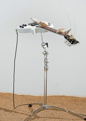 """COURTESY OF MMFA - Installation shot of """"from here to ear"""" by Céleste Boursier-Mougenot"""
