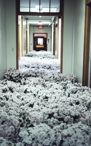 "COURTESY OF BMAC - ""Bloom"" by Anna Schuleit Haber"