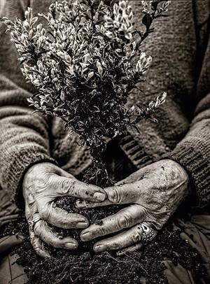 "COURTESY OF DARKROOM GALLERY - ""Gardener"" by Rosemary Verey"