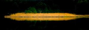 """""""Dewey's Pond"""" by Kip King - Uploaded by K2"""