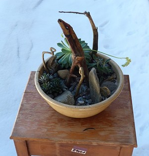 "COURTESY OF THE FRONT - ""Chiron and the Hydra"" terrarium by Melora"