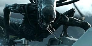 e79babbc_alien_covenant_widwe.jpg