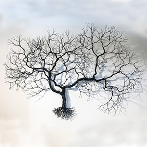 COURTESY OF STOWE CRAFT & DESIGN - Wire tree by Randy Adams