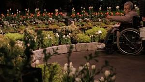 Vermont Flower Show [SIV390]