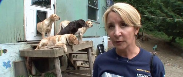Video footage of the Bakersfield puppy mill seizure
