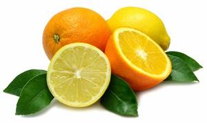 foodnews-citrus.jpg
