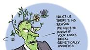 Who's Trying to Kill the GMO Bill?