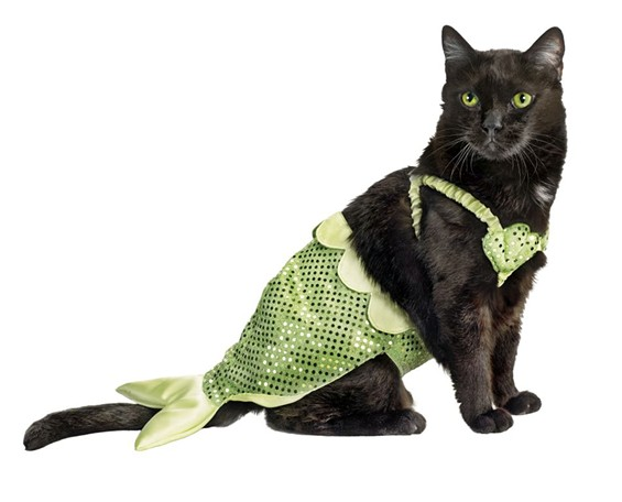 kitty_mermaid.jpg