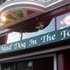 20 Years and Quizzing: Mad Dog in the Fog's Pub Quiz Turns 20
