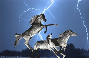 A trio of horses are surprised by lightning - FLICKR/BO INSOGNA