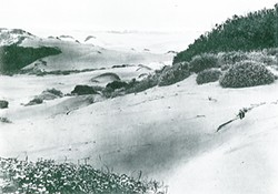 "FROM THE RAYMOND H. CLARY COLLECTION IN  ""THE MAKING OF GOLDEN GATE PARK, THE EARLY YEARS: 1865-1906"" - A typical view in the west of San Francisco, circa 1865: ""natural,"" but not ""naturalistic."""