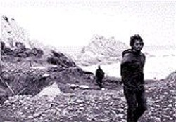 A wind-swept beach scene from Alix - Lambert's Mana.