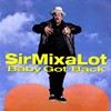 "After 20 Years, Sir Mix-a-Lot's ""Baby Got Back"" Is Still Huge Because America Loves Asses"