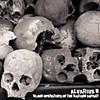 Alvarius B