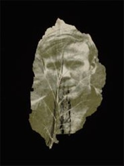 BINH  DANH - An untitled piece from Binh Danh's series of Vietnam-era portraits transferred onto leaves via photosynthesis.