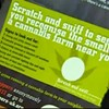 Brits Use Scratch n Sniff Cards to Teach Residents How to Detect Pot Farms