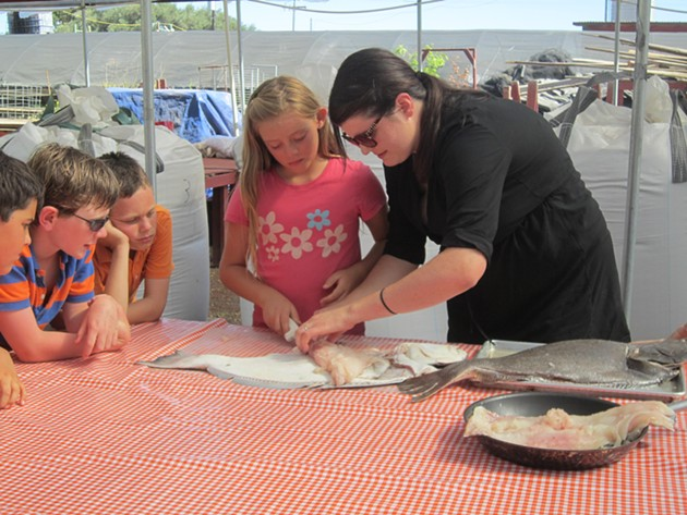 Anna Larsen of Siren Sea SA demonstrates how to fillet a halibut to a camper at Bay Leaf Kitchen at Eatwell Farm this summer. - ALIX WALL