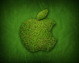 Apple cowers to SF's green might - EARL WILKERSON VIA FLICKR