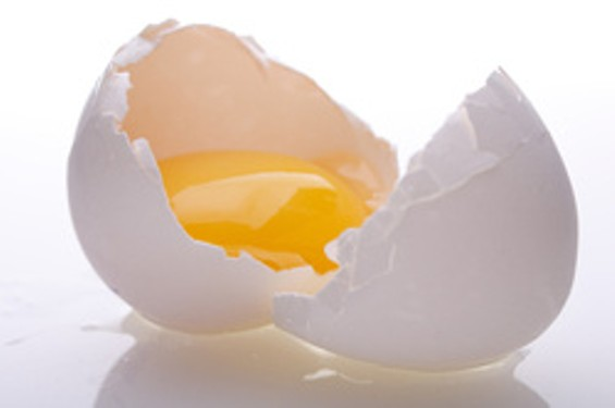 eggpic_thumb_250x166.jpg