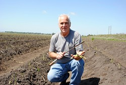 COURTESY OF CUESA - Asparagus farmer Roscoe Zuckerman crouches in his field in the Sacramento River Delta.