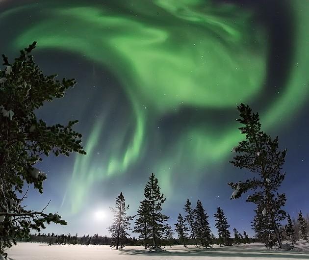 Auroras in Russia this morning! - ТРИФОНОВА ЛЮБОВЬ/SPACEWEATHER.COM