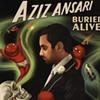 Aziz Ansari Plans July S.F. Visit on Buried Alive Tour