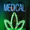 S.F. Medical Pot Growers Smoked District Attorney