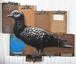 ROA - Belgian street artist ROA pulls inspiration for his work from the cities they're in. Here, clipboards and a bird become Tenderloin Pigeon.
