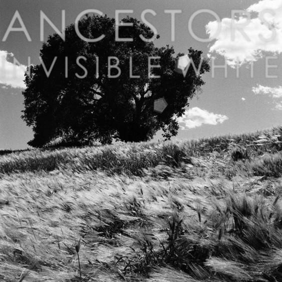 ancestors_invisible_white_500_thumb_500x500.jpeg