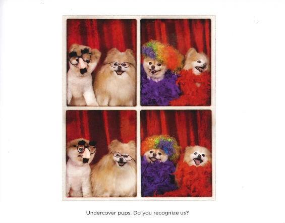 boo_photobooth.jpg