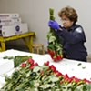 Border Control Cracks Down on Immigration of Red Roses