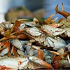 Celebrate Dungeness Season at Crab Feed For a Cause