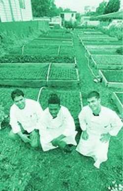 ANTHONY  PIDGEON - Chef Ruben Ramirez, pastry chef Turgo Jeune, and sous-chef Liran Mezan, in  Santa Fe Bar & Grill's organic garden.