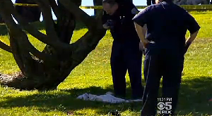 Christine Svanemyr was sunbathing right here when she was killed. - SCREEN-GRAB VIA CBS NEWS