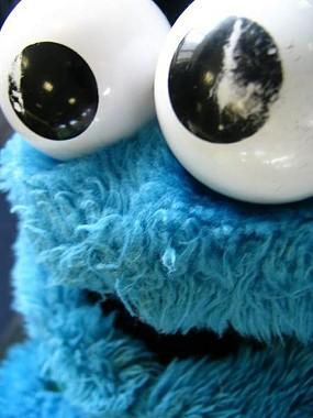 """Cookie Monster: """"C"""" is for """"kooky."""" - DELFI JINGLES/FLICKR"""