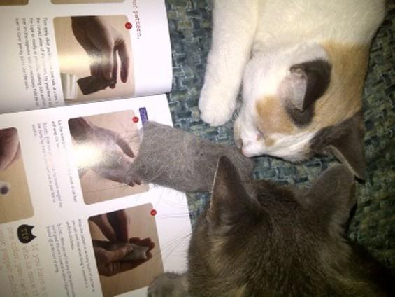 cat_hair_fifi_and_blk_inspect_puppet.jpg